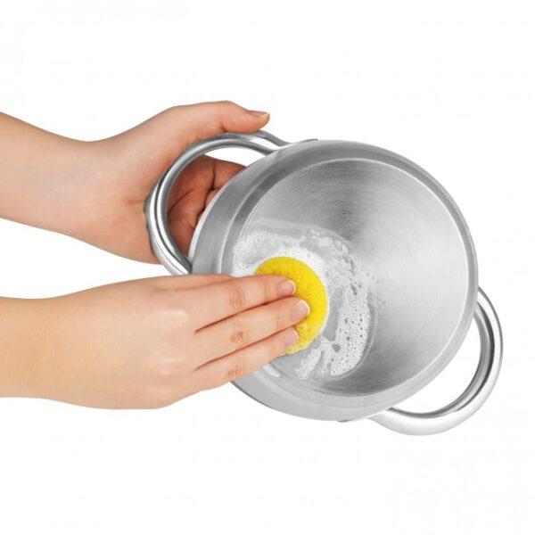 Rokitta's Edelstahlreiniger mit Zitronenduft